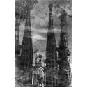 Fotografia Reflex Aigua Sagrada Família 2