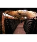 Montserrat & Codorníu Wine Cellars