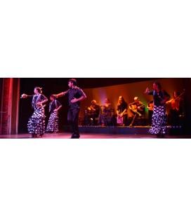Palacio del Flamenco – espectacle amb menú de tapes opcional