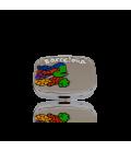 Pill box Lizard