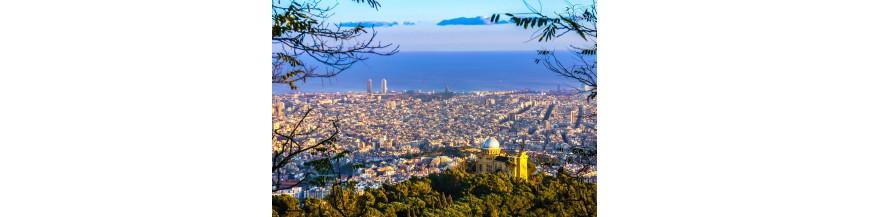 Visitez Barcelone